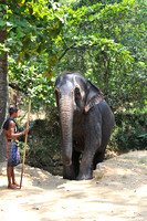 sri-lanka holiday-2950